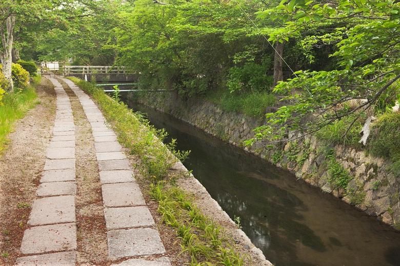 Philosopher's Walk, Kyoto Prefecture, Honshu, Japan