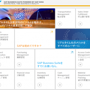 SAP Real Time Business