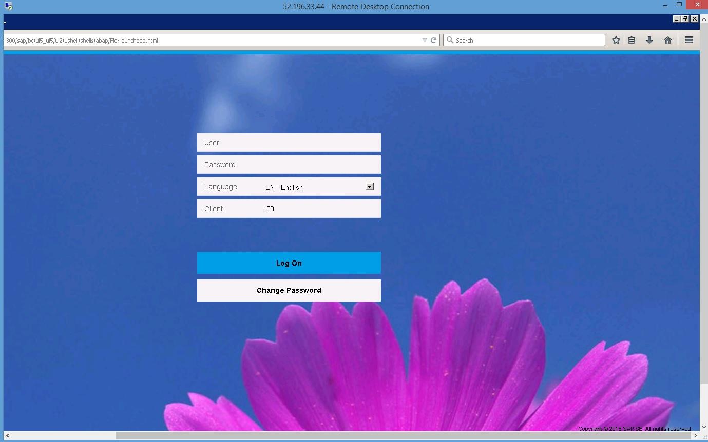 SAP S/4HANAをさわってみよう- SAP S/4HANAトライアル環境でCDS