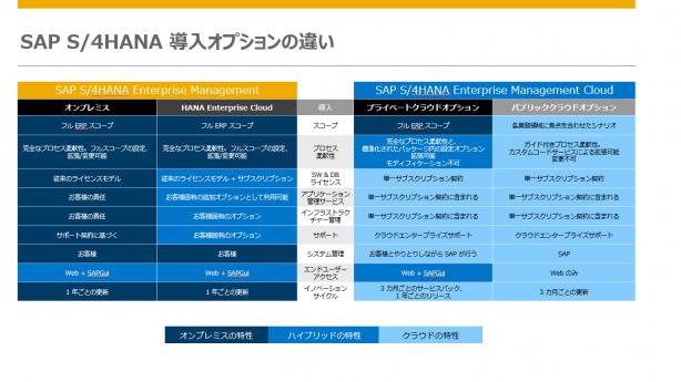 SAP S/4HANA導入オプション