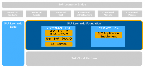 SAP Leonardo Foundation