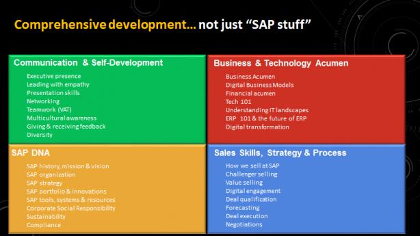 SAP Academyで提供されるプログラム。非常に広範な能力の訓練であることが伺える(出典:SAP)