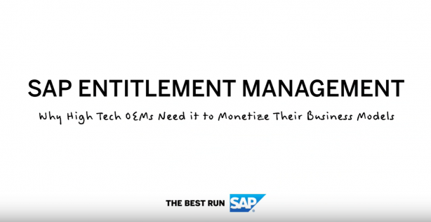 SAP Entitlement