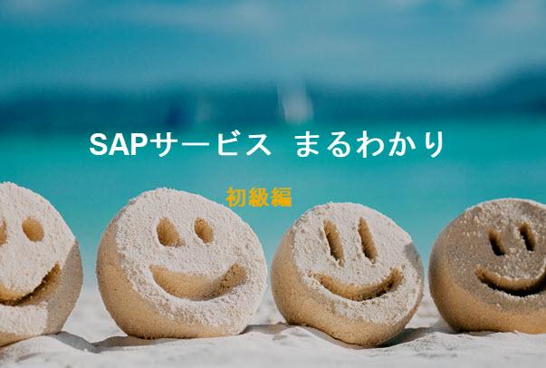 SAP サービスまるわかり<br /> 初級編